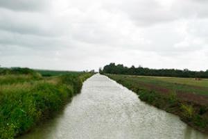 canal dans les marais